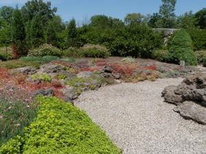 Botanical Gardens and the Arb 003 Day 58: Matthaei Botanical Gardens and Nichols Arboretum