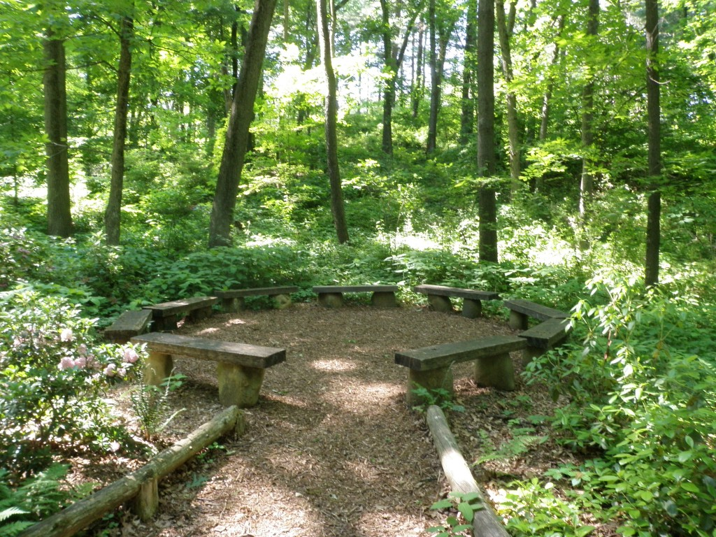 Botanical Gardens and the Arb 015 Day 58: Matthaei Botanical Gardens and Nichols Arboretum