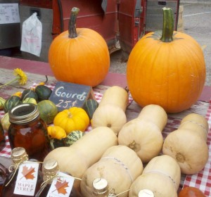 Fall Goods Fulton Street Farmers Market Facebook Day 144: Fulton Street Farmer's Market