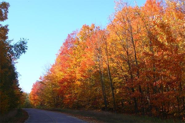 Leelanau County 4 Day 123: Fall Colors in Benzie and Leelanau Counties