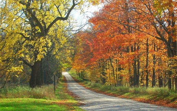 Leelanau County 5 Day 123: Fall Colors in Benzie and Leelanau Counties