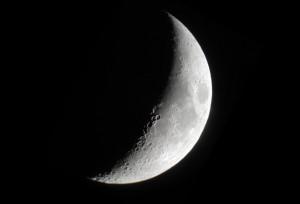 Photo courtesy of Abrams Planetarium Day 140: Abrams Planetarium