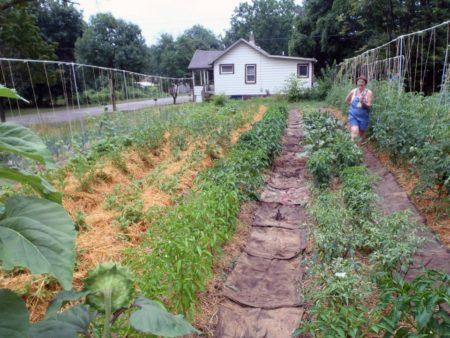 Ingham County Land Bank Garden Program