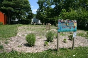 522468 283555615075296 1708004565 n Ingham County Land Bank Garden Program