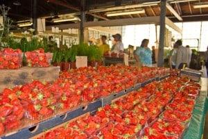 farmers market 941 Royal Oak Farmer's Market