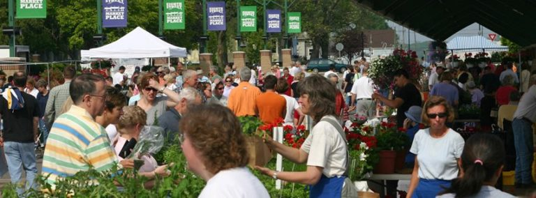 The Awesome Mitten - Holland Farmer's Market