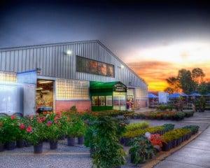 il fullxfull.2247410671 Royal Oak Farmer's Market