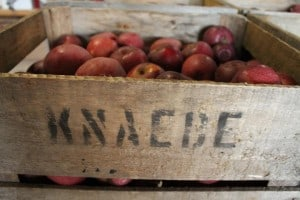 The Awesome Mitten - Awesome Orchards in the Mitten