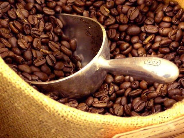 Coffee Coffee Roaster Round Up