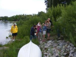 Wetland 3 Michigan's Awesome Wetlands
