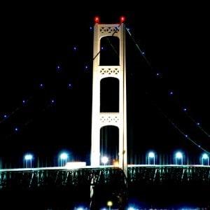 Photo Courtesy Light It Blue Michigan