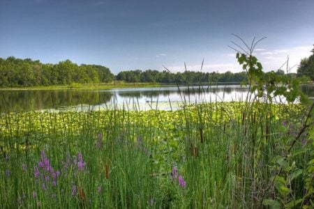 12 Tips for Greener Traveling in Michigan