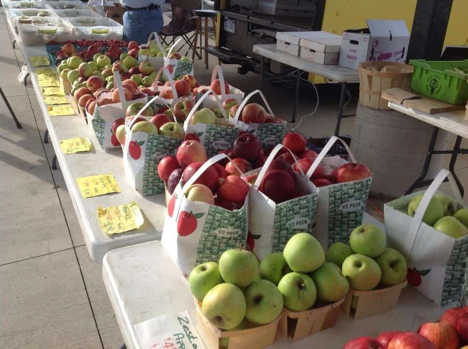 Grand River Farmers Market Apples