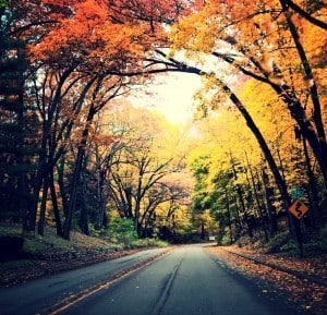 Kalamazoo's Fall Color Tour: 4 Roads You Can't Miss - Awesome Mitten