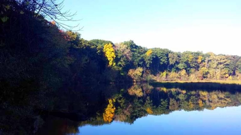 The Awesome Mitten - An Ann Arbor Autumn along the Huron River