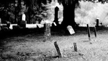 Five Haunted Stories - The Awesome Mitten