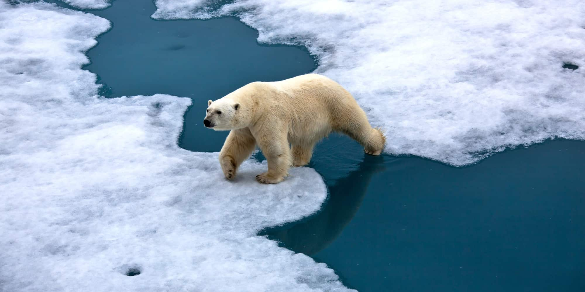 o CLIMATE CHANGE facebook Climate Change, what's it mean for Michigan?