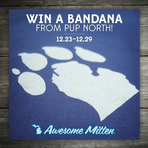 Pup North Giveaway - The Awesome Mitten