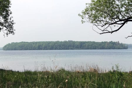 Southerner Meets Michigan: Uncovering The Mystery of Apple Island