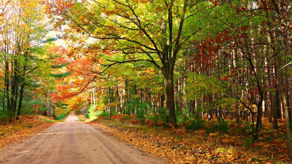 4 Michigan Drives to Make the Most of Fall - Awesome Mitten