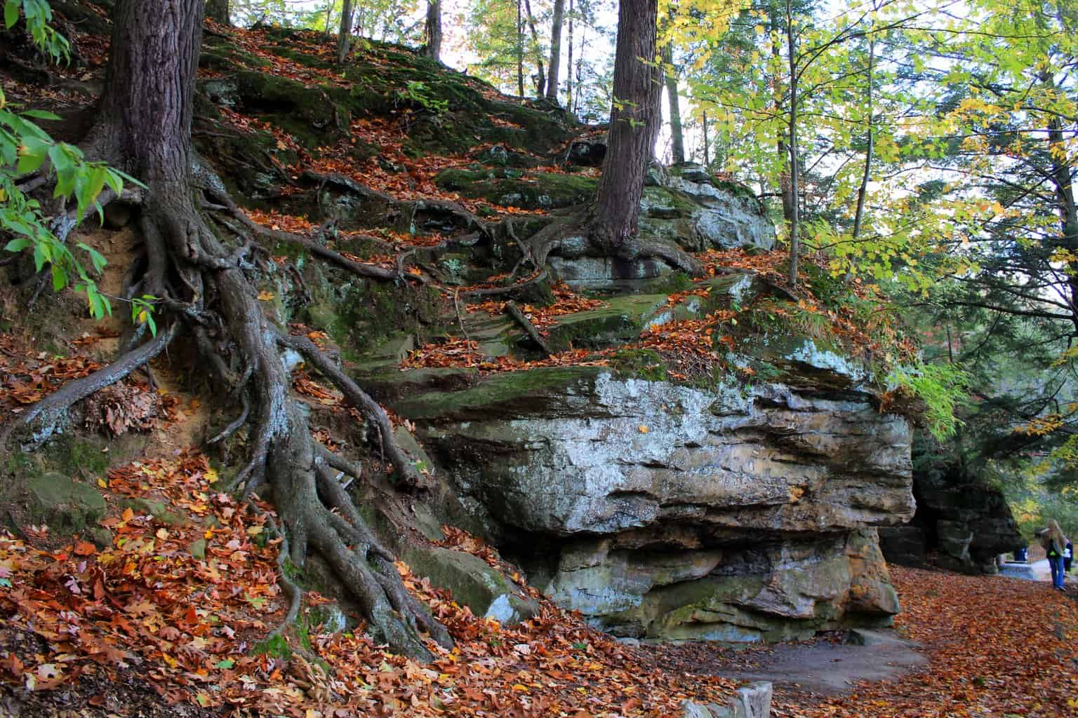 A Guide to Color Tours Around Mid-Michigan - Awesome Mitten
