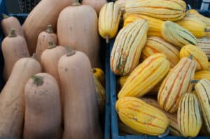 The Awesome Mitten - Here's How to Eat Michigan Squash this Fall