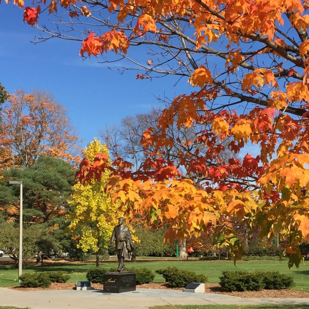 The John Hannah statue at MSU, behind trees with gradient colored leaves from red to orange to yellow to green