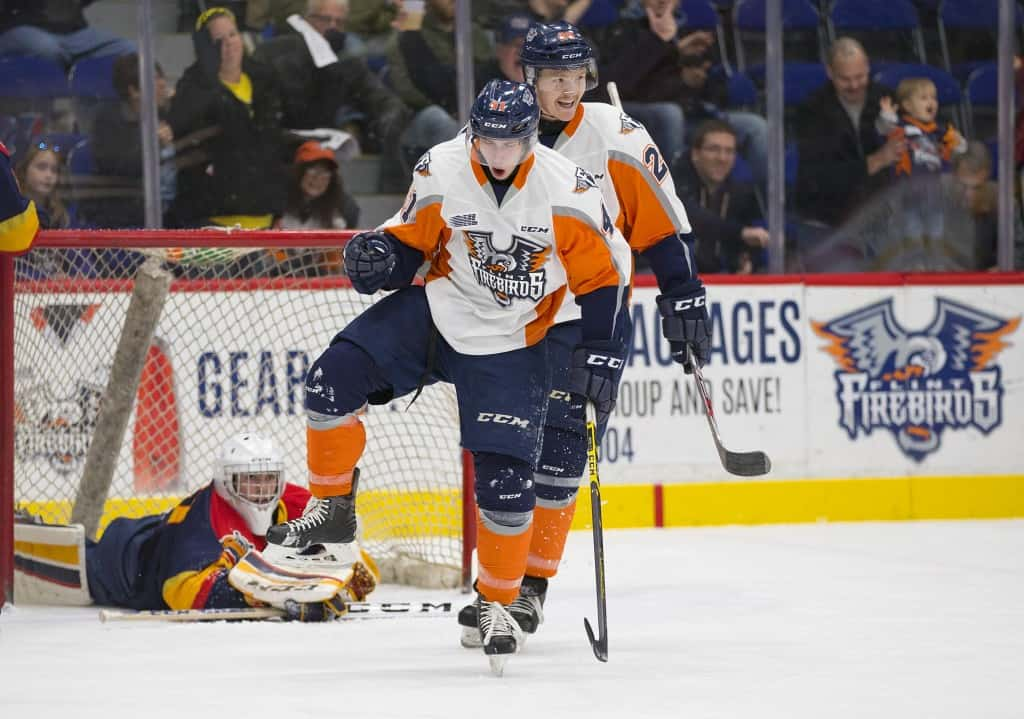 Flint Firebirds hockey - Awesome Mitten