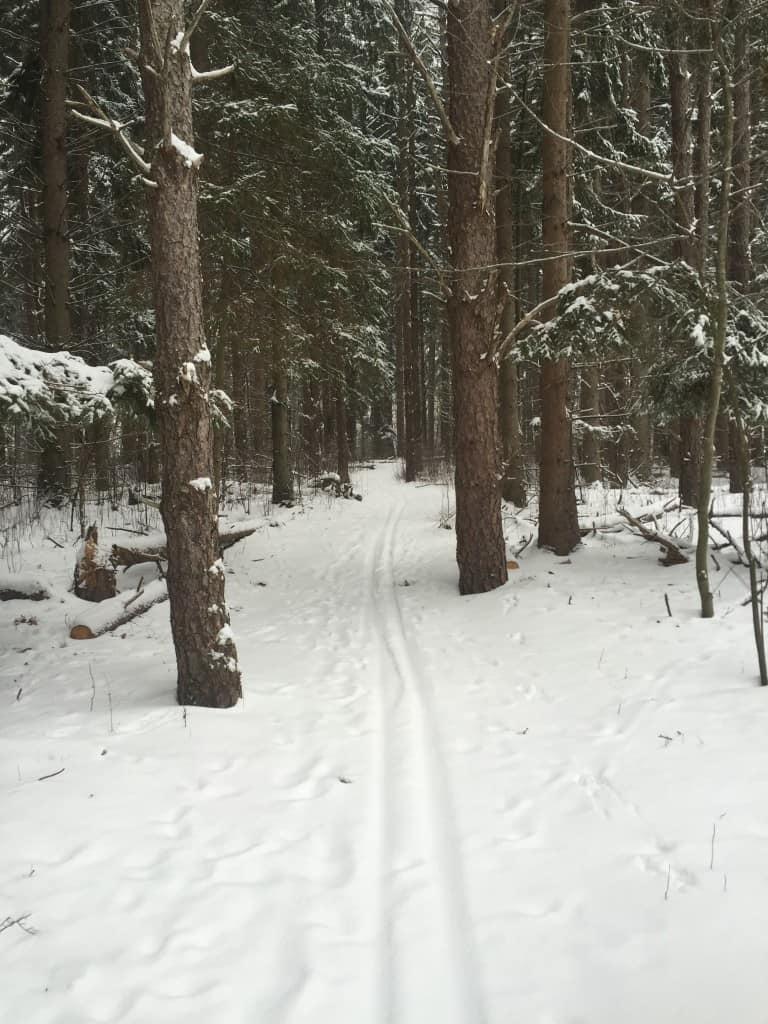Dahlem Trails