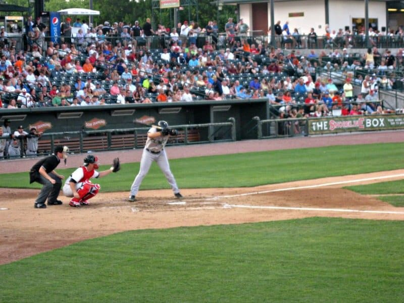 The Great Lakes Loons call Dow Diamond in Midland home. Photo Courtesy of Margaret Clegg