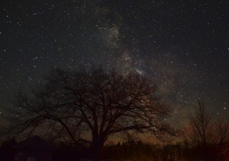See the Stars at Headlands International Dark Sky Park | Mackinaw City, MI
