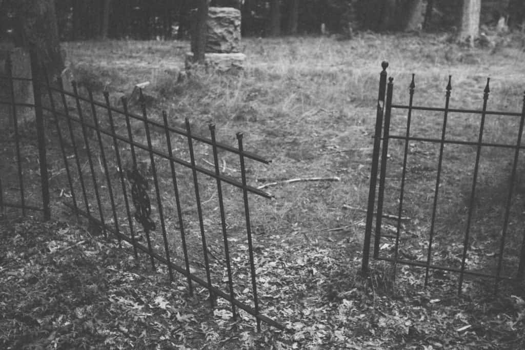 Section of Mouth Cemetery fence| Photo by Gideon Hunter