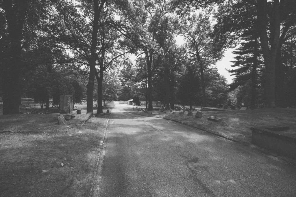 Pine Hill | Photo by Gideon Hunter