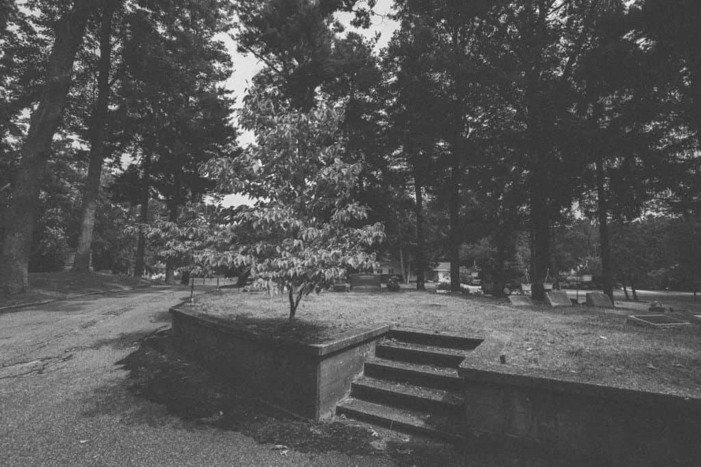 Pine Hill   Photo by Gideon Hunter