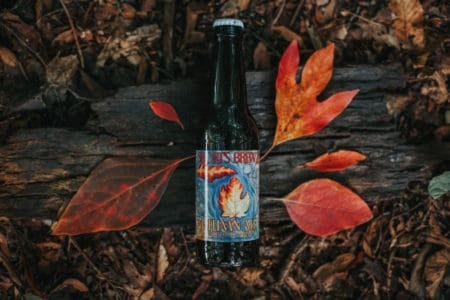 21 Best Michigan Fall Beers