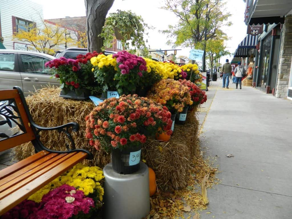 Autumn Day Trips Grand Rapids - The Awesome Mitten