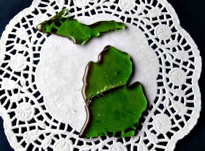 Homemade Candy shaped like Michigan