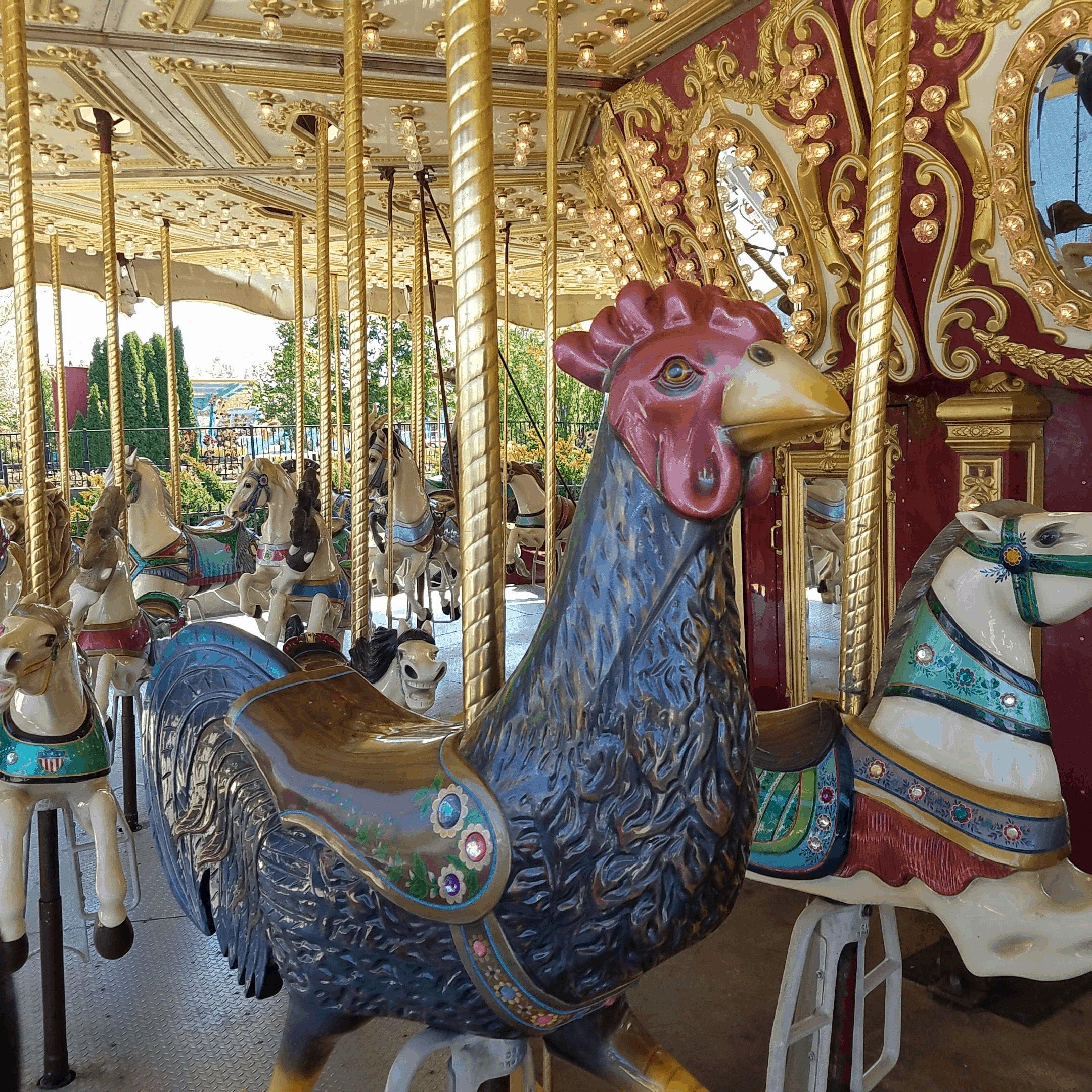 carousel at Michigan adventure