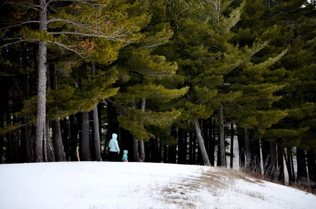 Millie Hill Trail 5 Hike the Millie Hill Bat Cave Trail