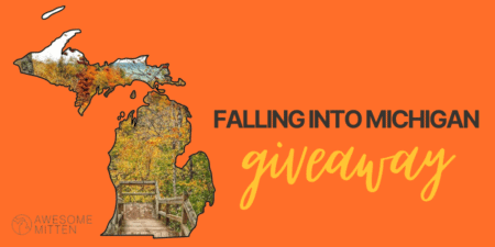 Falling into Michigan Giveaway