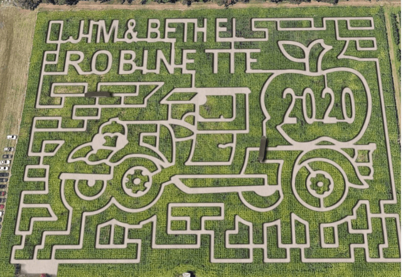 fall in Michigan - corn mazes at Robinettes orchard