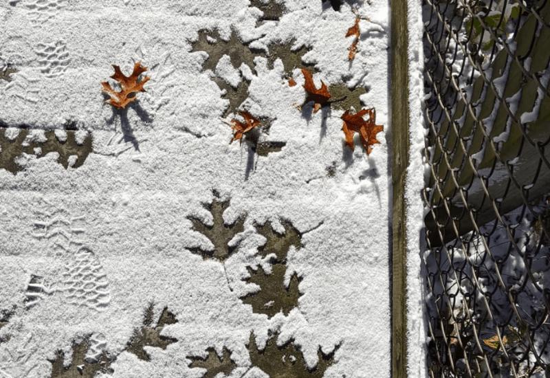 fall in michigan snowfall