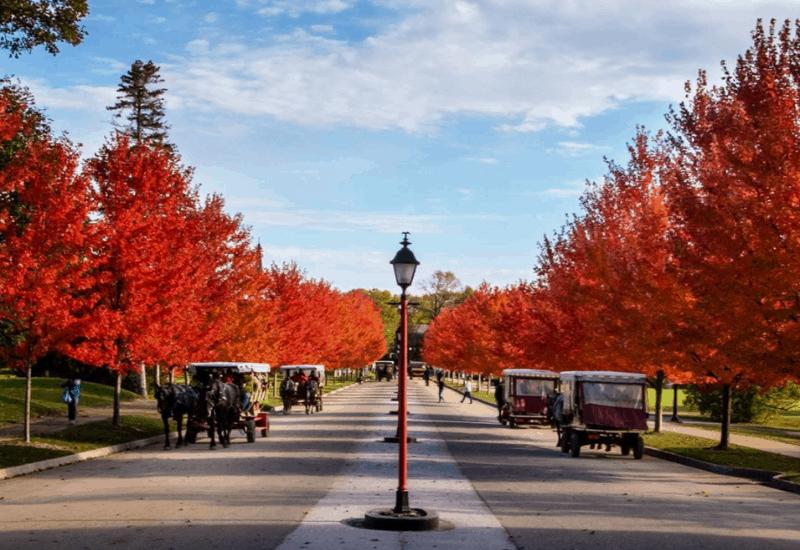fall on Mackinac Island