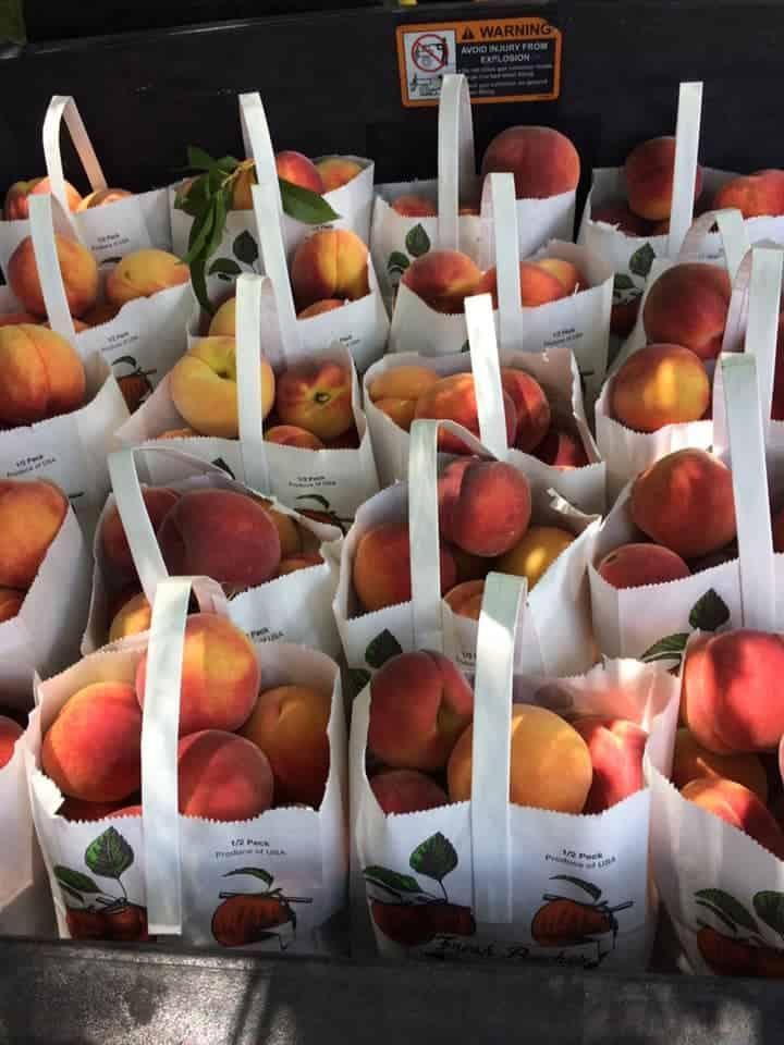 apple orchard in michigan's upper peninsula