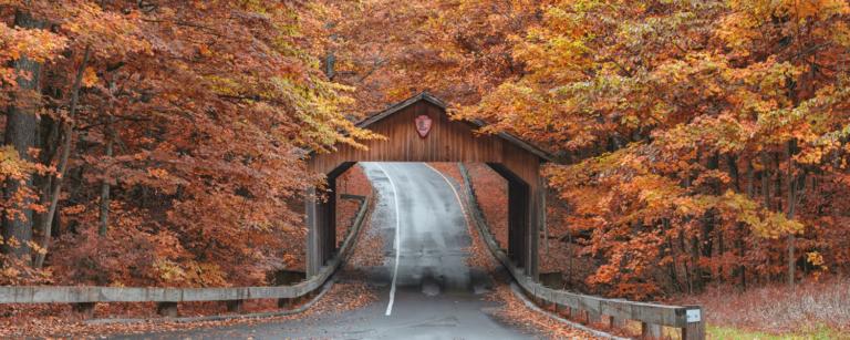 Must Visit Fall in Michigan Sleeping Bear Dunes Home New