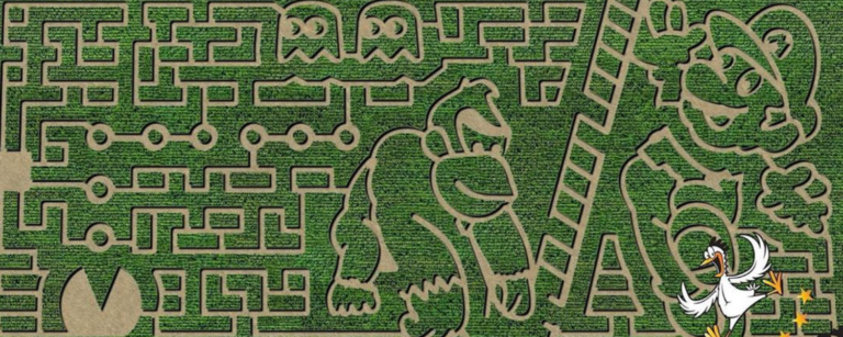 best michigan corn mazes and pumpkin patches