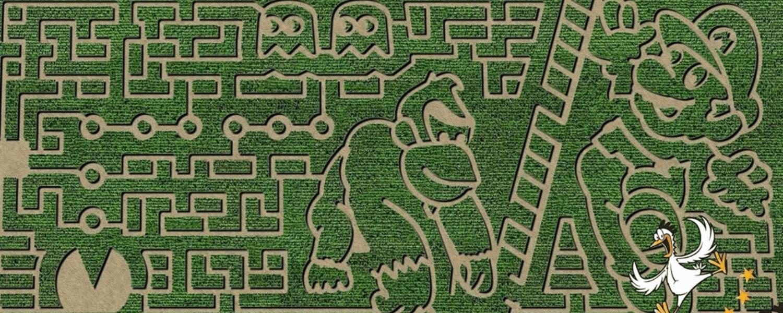 best michigan corn mazes and pumpkin patches