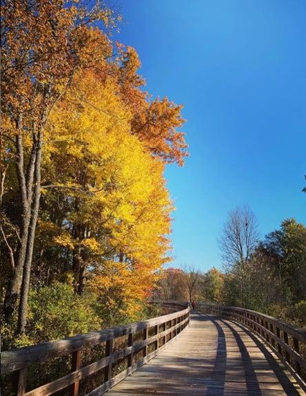 Dexter River Walk - Dexter Michigan - Michigan fall colors