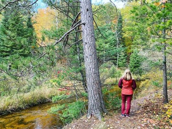 Fall in Michigan - Ocqueoc Falls Bi-Centennial Pathway