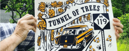 tunnel of trees m-119